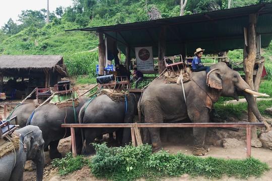 Điều cần biết cho người du lịch tự túc Chiang Mai - Thái Lan - Ảnh 13.