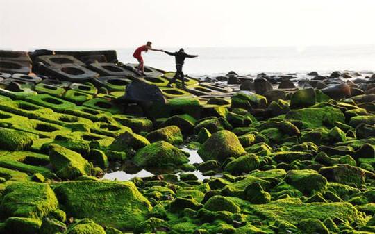 Kinh nghiệm du lịch Phú Yên tự túc giá rẻ 2018 - Ảnh 6.