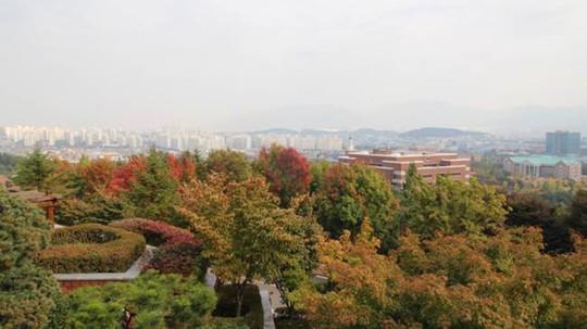 Mê đắm ngôi trường siêu đẹp trong hơn 100 bộ phim Hàn Quốc - Ảnh 4.