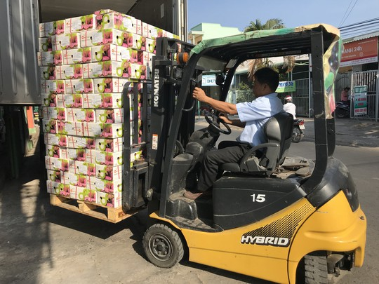 Khoai lang Việt Nam có cơ hội xuất khẩu số lượng lớn sang Thái - Ảnh 3.