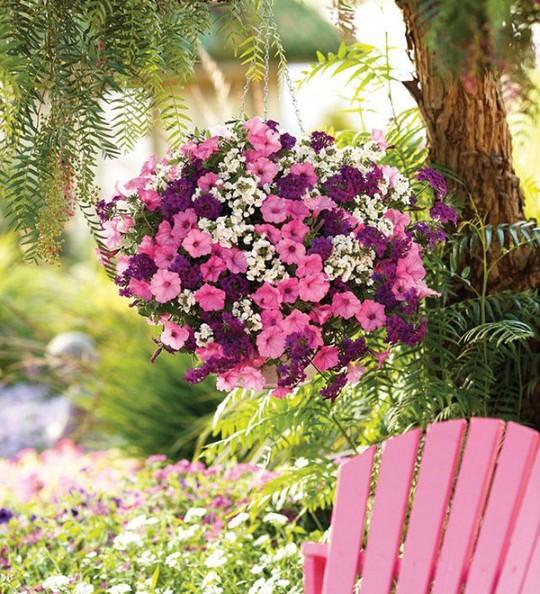 Ban công tràn ngập sắc hè nhờ trang trí với hoa tươi - Ảnh 11.
