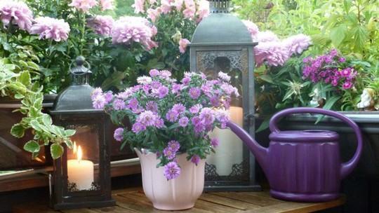 Ban công tràn ngập sắc hè nhờ trang trí với hoa tươi - Ảnh 13.
