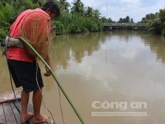 Quái kiệt săn cá ngát trên sông Hàm Luông - Ảnh 2.