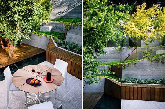 Khu vườn thiết kế kiểu ruộng bậc thang ai thấy cũng mê - Ảnh 5.