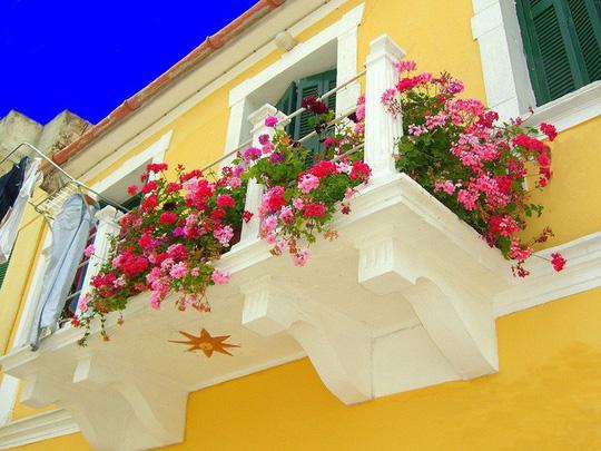 Ngất lịm với những ban công rực rỡ sắc hoa mùa hè - Ảnh 1.