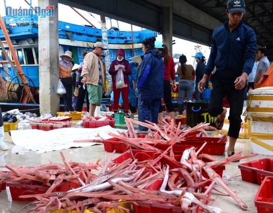 Về Quảng Ngãi thưởng thức đặc sản cá tào lao - Ảnh 1.