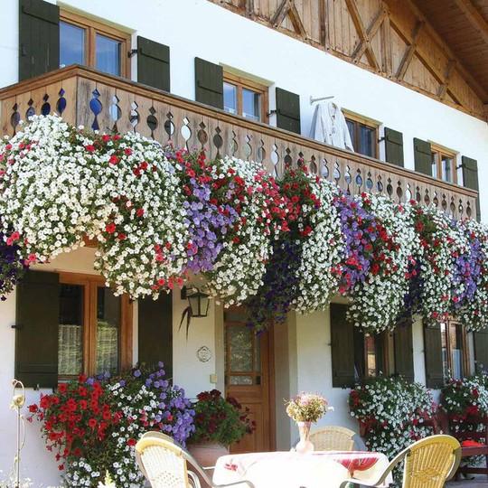 Ngất lịm với những ban công rực rỡ sắc hoa mùa hè - Ảnh 8.