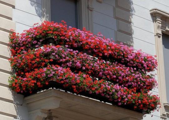Ngất lịm với những ban công rực rỡ sắc hoa mùa hè - Ảnh 9.