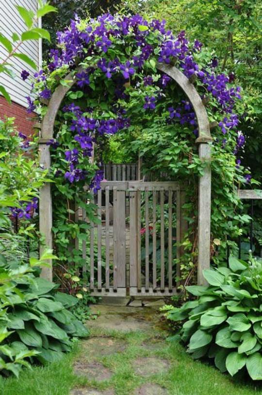 Khu vườn trở nên lãng mạn nhờ cổng vòm rực rỡ sắc hoa - Ảnh 2.