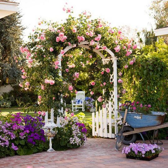 Khu vườn trở nên lãng mạn nhờ cổng vòm rực rỡ sắc hoa - Ảnh 11.