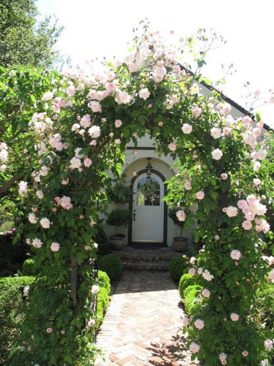 Khu vườn trở nên lãng mạn nhờ cổng vòm rực rỡ sắc hoa - Ảnh 5.