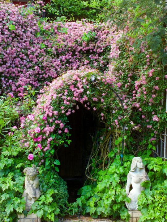 Khu vườn trở nên lãng mạn nhờ cổng vòm rực rỡ sắc hoa - Ảnh 9.