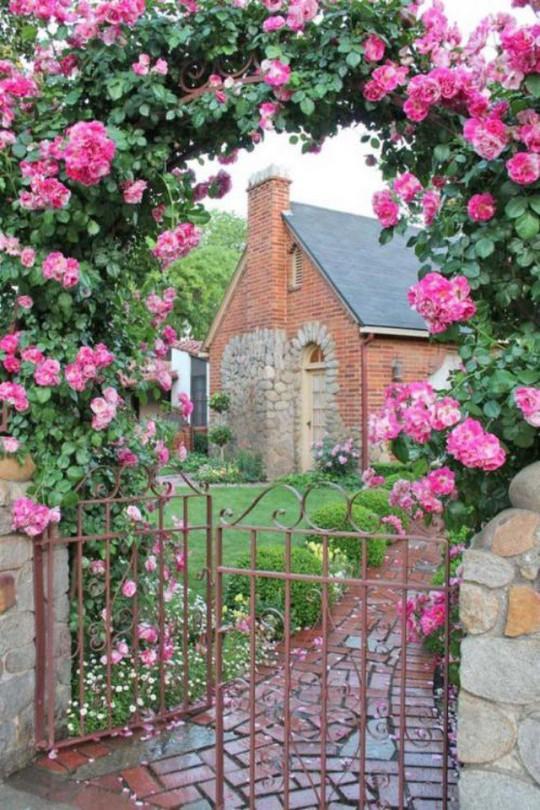 Khu vườn trở nên lãng mạn nhờ cổng vòm rực rỡ sắc hoa - Ảnh 10.