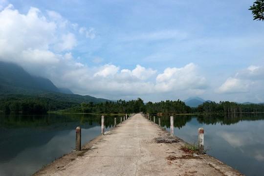 Ngắm cánh đồng sen tuyệt đẹp ở Quảng Nam - ảnh 7
