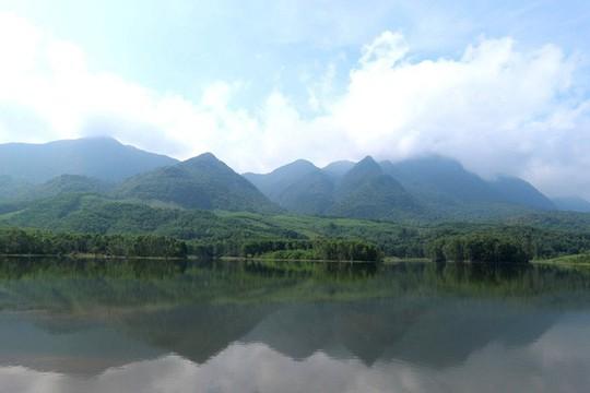 Ngắm cánh đồng sen tuyệt đẹp ở Quảng Nam - ảnh 9