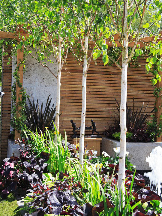 10 mẫu hàng rào đẹp, tiết kiệm chi phí cho khu vườn nhà bạn - Ảnh 1.
