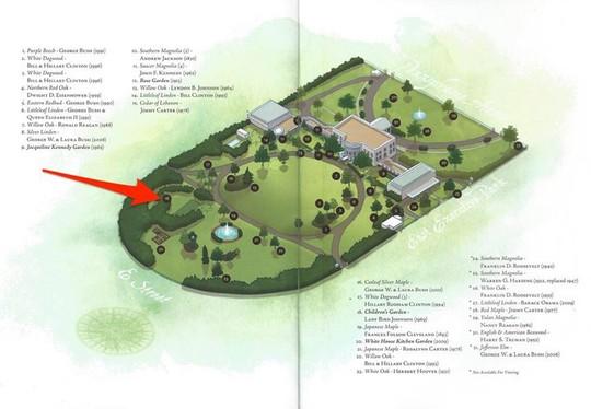Khám phá những khu vườn bí mật của Nhà Trắng - Ảnh 9.