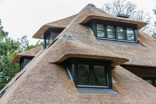 Ngôi nhà như thế nào mà được xếp hạng top 1 tại Hà Lan? - Ảnh 10.