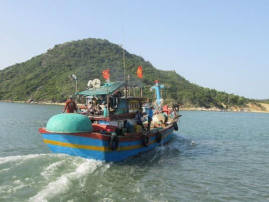 Sướng rơn ở bến cá nơi cửa biển Đề Gi lúc sớm mai - Ảnh 1.