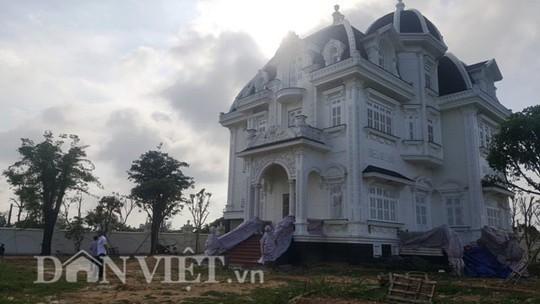 Biệt thự siêu khủng giữa làng quê Hà Tĩnh - Ảnh 2.