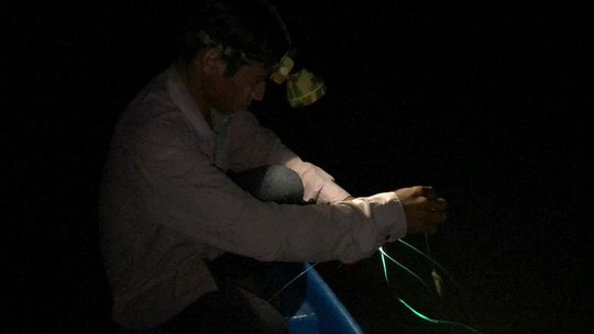 Săn cá ngát đêm ở Sài Gòn - Ảnh 5.