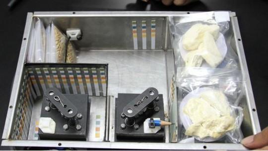 Kiện hàng sắp được Thái Lan phóng lên không gian với những gói sầu riêng ngon lành - ảnh: GISTDA