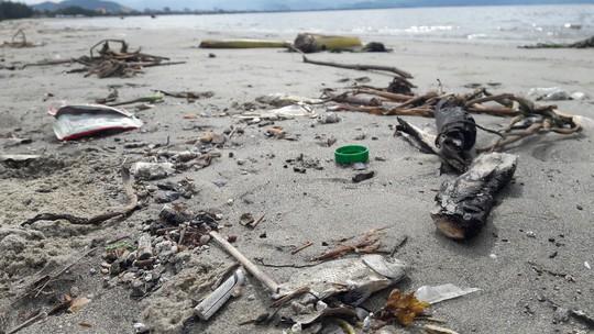 Đà Nẵng: Hơn 5km bờ biển Nguyễn Tất Thành bị rác thải bủa vây - Ảnh 2.
