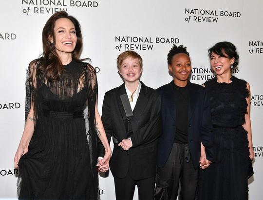 Angelina Jolie có thể mất quyền nuôi con - Ảnh 1.