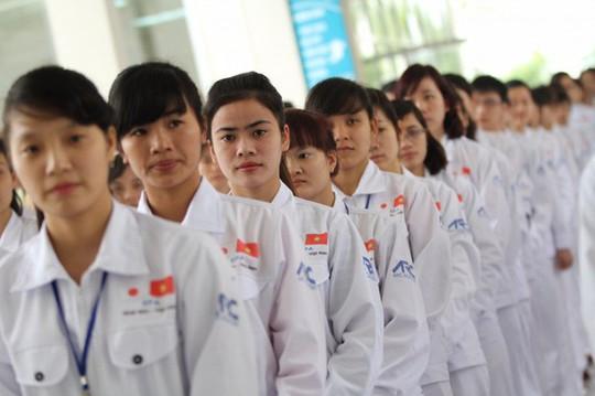 Tuyển 500 thực tập sinh sang Nhật Bản làm việc - Ảnh 1.