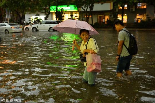 """""""Mưa"""" bạch tuộc, sao biển và tôm ở Trung Quốc - Ảnh 7."""