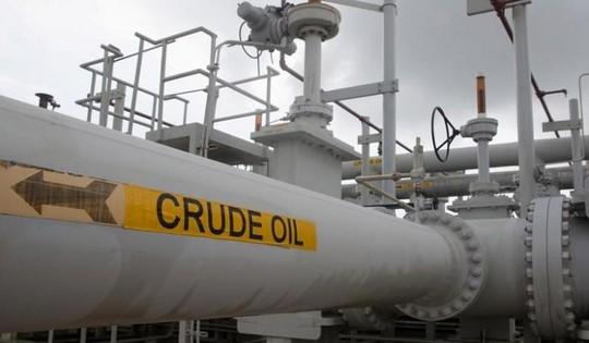 Ấn Độ, Trung Quốc gây sức ép lên OPEC - Ảnh 1.