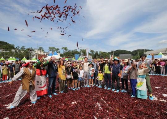 Độc đáo những lễ hội xứ sở Kim chi - Ảnh 7.