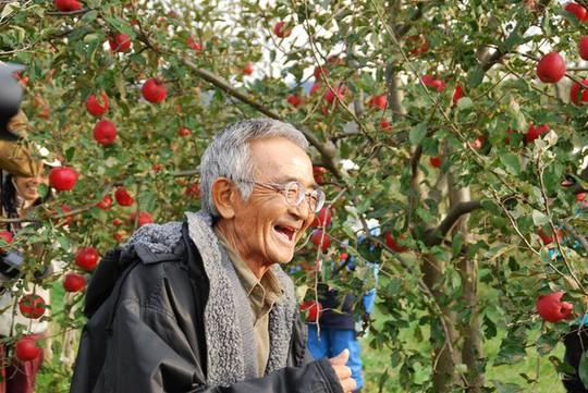 Vườn táo đẹp như cổ tích của cụ ông người Nhật  - Ảnh 2.