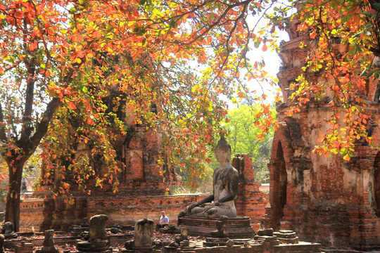 Một ngày thú vị ở cố đô Ayutthaya - Ảnh 3.
