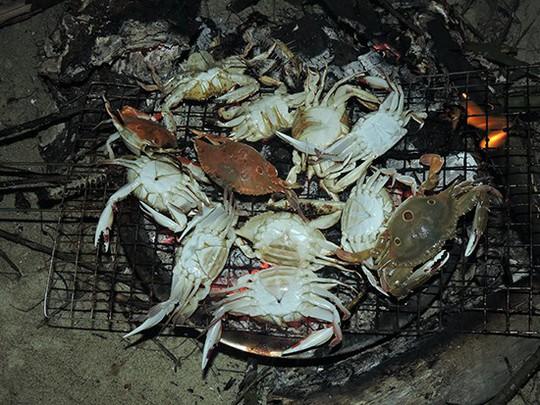 Quá sướng thấy ghẹ dính đầy lưới ngư dân ngay sát bờ biển Hội An - Ảnh 4.