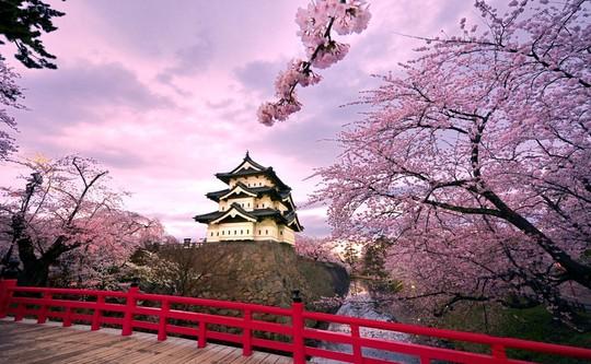 Những lý do bạn phải tới Osaka một lần trong đời - Ảnh 5.