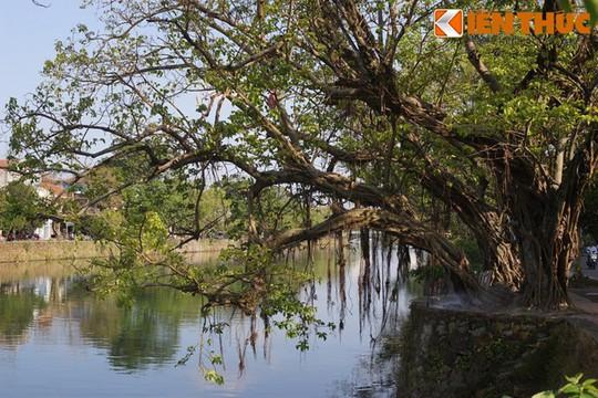 Khám phá vẻ đẹp đậm chất Huế của sông Đông Ba - Ảnh 17.