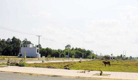 Đất nền Sài Gòn chỉ bớt nóng, giá không giảm mạnh - Ảnh 1.