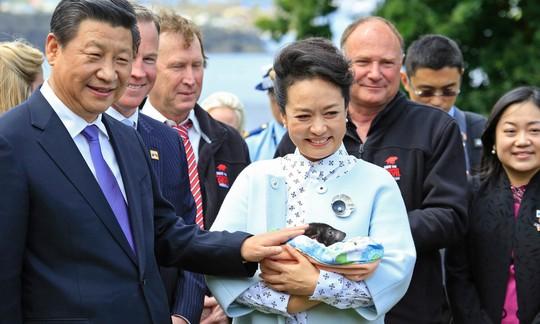 Úc: Bang Tasmania e ngại dự án 100 triệu USD của Trung Quốc - Ảnh 1.