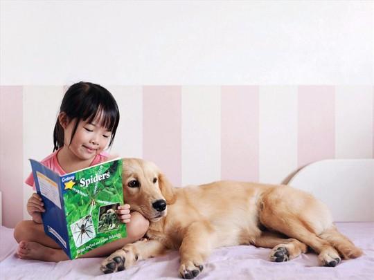 Cẩn trọng khi có vật nuôi trong nhà kẻo tiền tán, bệnh tật - Ảnh 6.