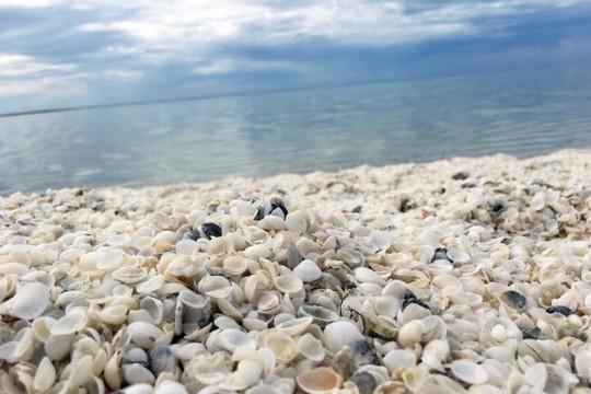 Những bãi biển lạ nhất thế giới ai cũng muốn đến một lần - Ảnh 8.