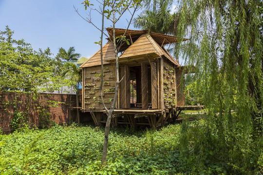 Ngôi nhà bằng tre đoạt nhiều giải thưởng kiến trúc thế giới - Ảnh 1.