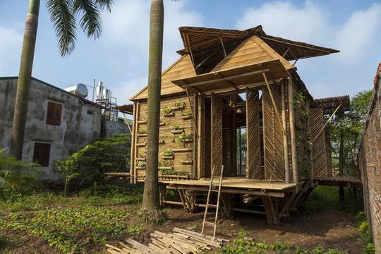 Ngôi nhà bằng tre đoạt nhiều giải thưởng kiến trúc thế giới - Ảnh 4.