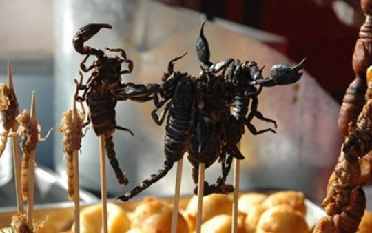 Đặc sản ngon trứ danh: bọ cạp vùng Bảy Núi! - Ảnh 8.