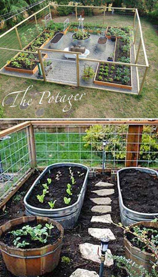 Sáng tạo này sẽ biến đất trống thành vườn rau đẹp - Ảnh 2.