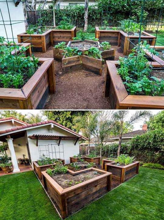Sáng tạo này sẽ biến đất trống thành vườn rau đẹp - Ảnh 14.
