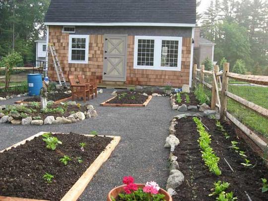 Sáng tạo này sẽ biến đất trống thành vườn rau đẹp - Ảnh 15.