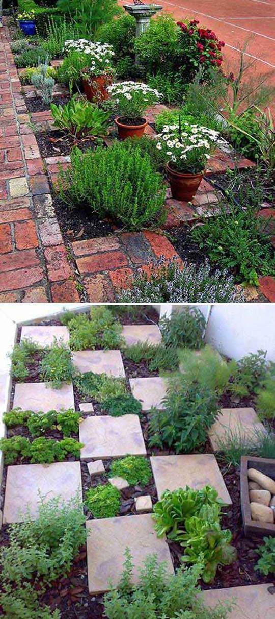 Sáng tạo này sẽ biến đất trống thành vườn rau đẹp - Ảnh 17.