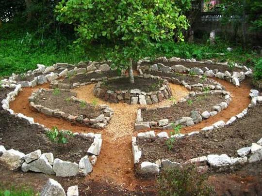 Sáng tạo này sẽ biến đất trống thành vườn rau đẹp - Ảnh 18.