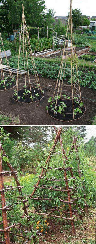 Sáng tạo này sẽ biến đất trống thành vườn rau đẹp - Ảnh 7.